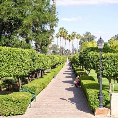 Photo Billet pour les jardins de Marrakech et transferts