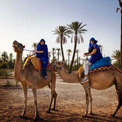 Photo Marrakech: 1/2 jour balade chameau dans la palmeraie